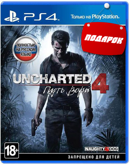 uncharted-4-a-thiefs-end-ps4-01 copy.jpg