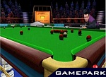 Скриншот World Snooker Challenge 2007, 4