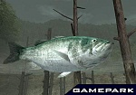 Скриншот Reel Fishing III, 7