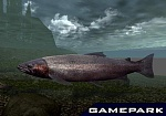 Скриншот Reel Fishing III, 8