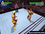 Скриншот Showdown: Legend of Wrestling, 2