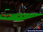 Скриншот World Championship Snooker 2004, 2