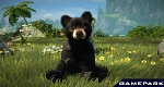 Скриншот Kinectimals. Now with Bears! (Xbox 360), 2
