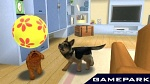 Скриншот Petz: My Puppy Family (PSP), 2