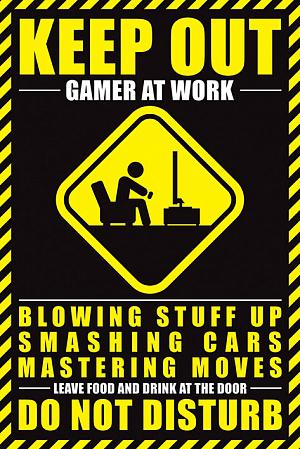 Постер Maxi Pyramid – Gamer At Work фото