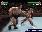 Скриншот Showdown: Legend of Wrestling, 3