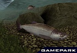 Скриншот Reel Fishing III, 2