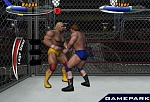 Скриншот Legend of Wrestling 2, 6