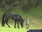 Скриншот Shadow of the Colossus, 4