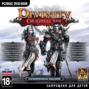 Divinity: Original Sin (PC-Jewel)