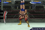 Скриншот Legend of Wrestling 2, 4