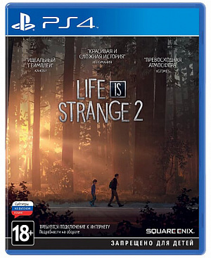 Life is Strange 2. Стандартное издание (PS4) фото
