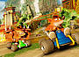 Crash Team Racing: Nitro-Fueled (PS4)