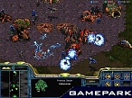 Скриншот StarCraft + StarCraft: Brood War (PC-Jewel), 5