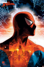 Постер Maxi Spider-Man – Protector Of The City (PP34505)