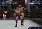 Скриншот Legend of Wrestling 2, 8
